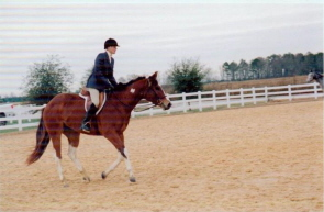 horseshow_photo_4