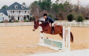 horseshow_photo_6